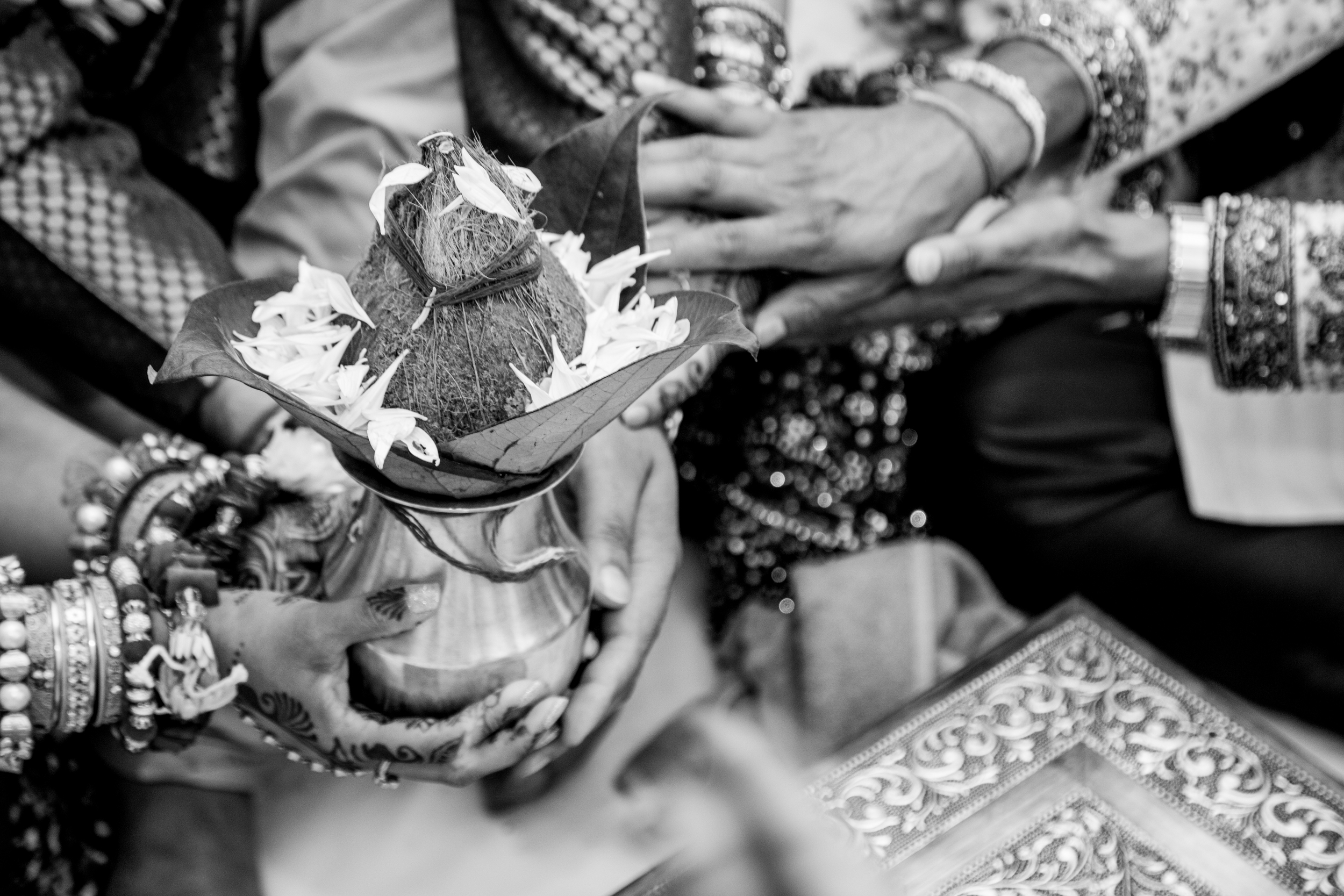 Vidhi Sachin Patel Photography-6912.jpg