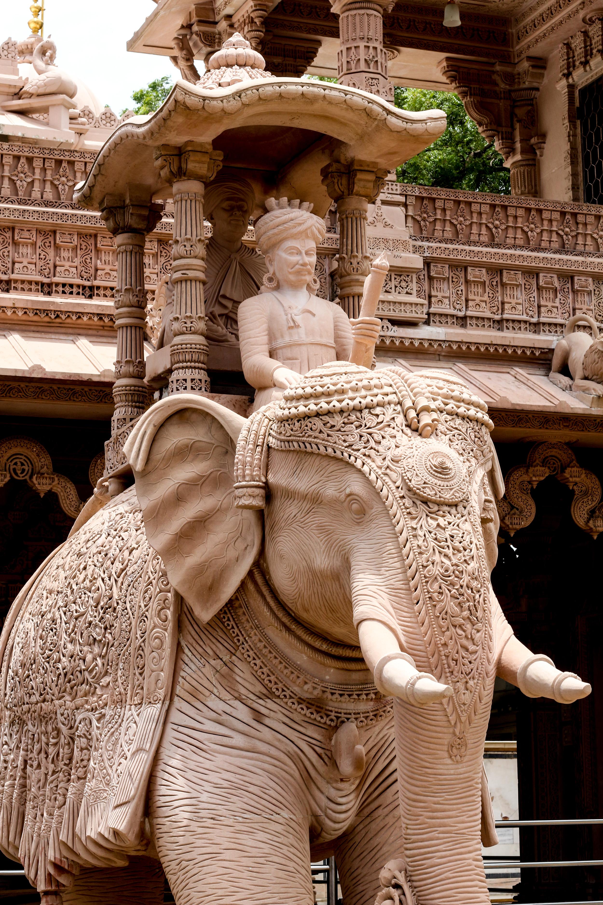 KM India Trip 2014-9187.jpg