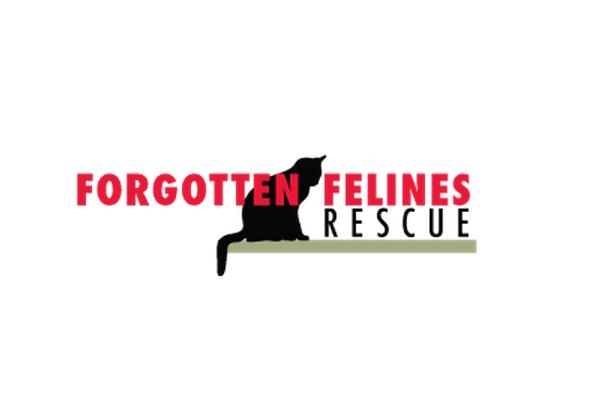 forgotten felines.png