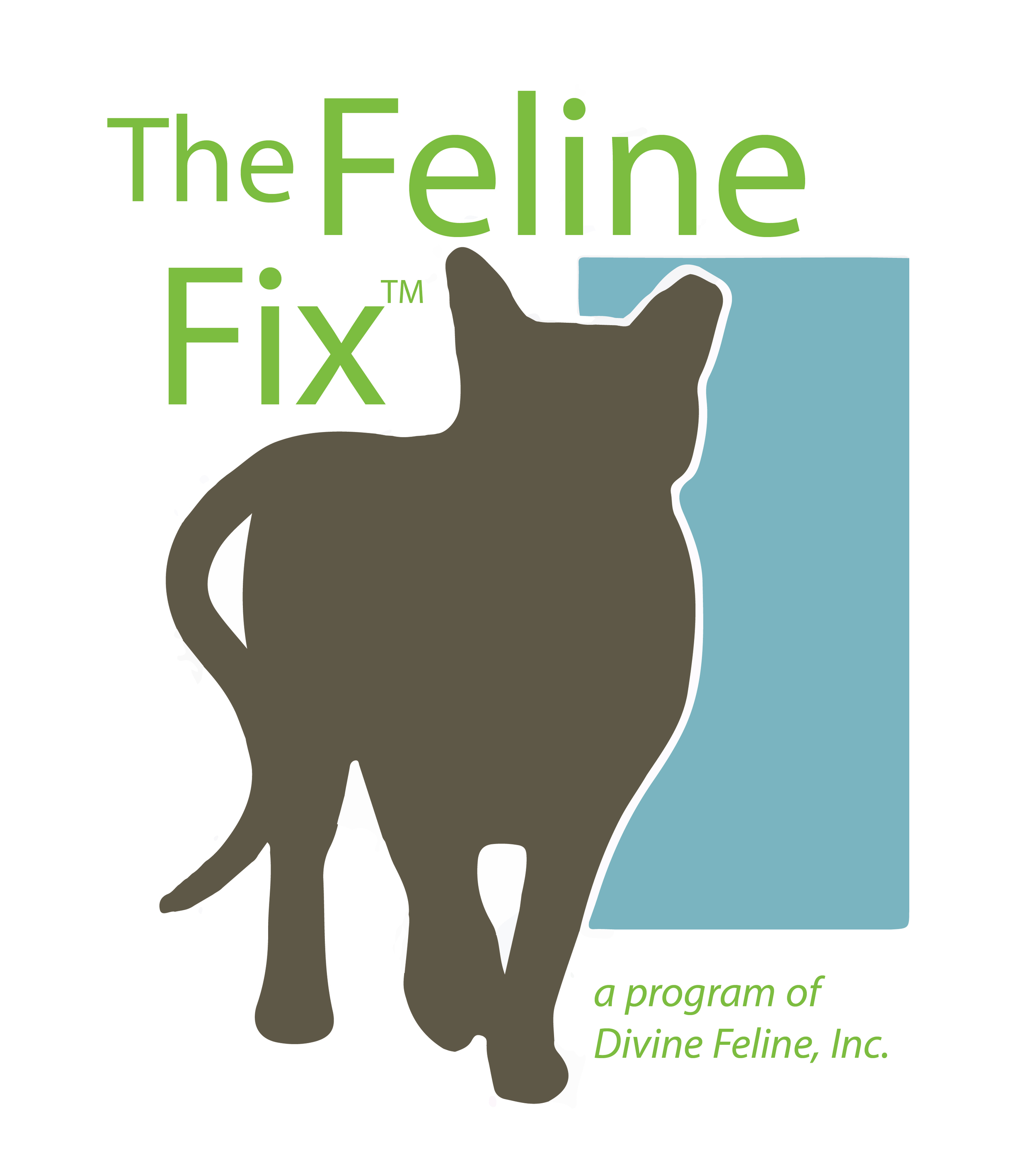Feline Fix-jpeg.jpg
