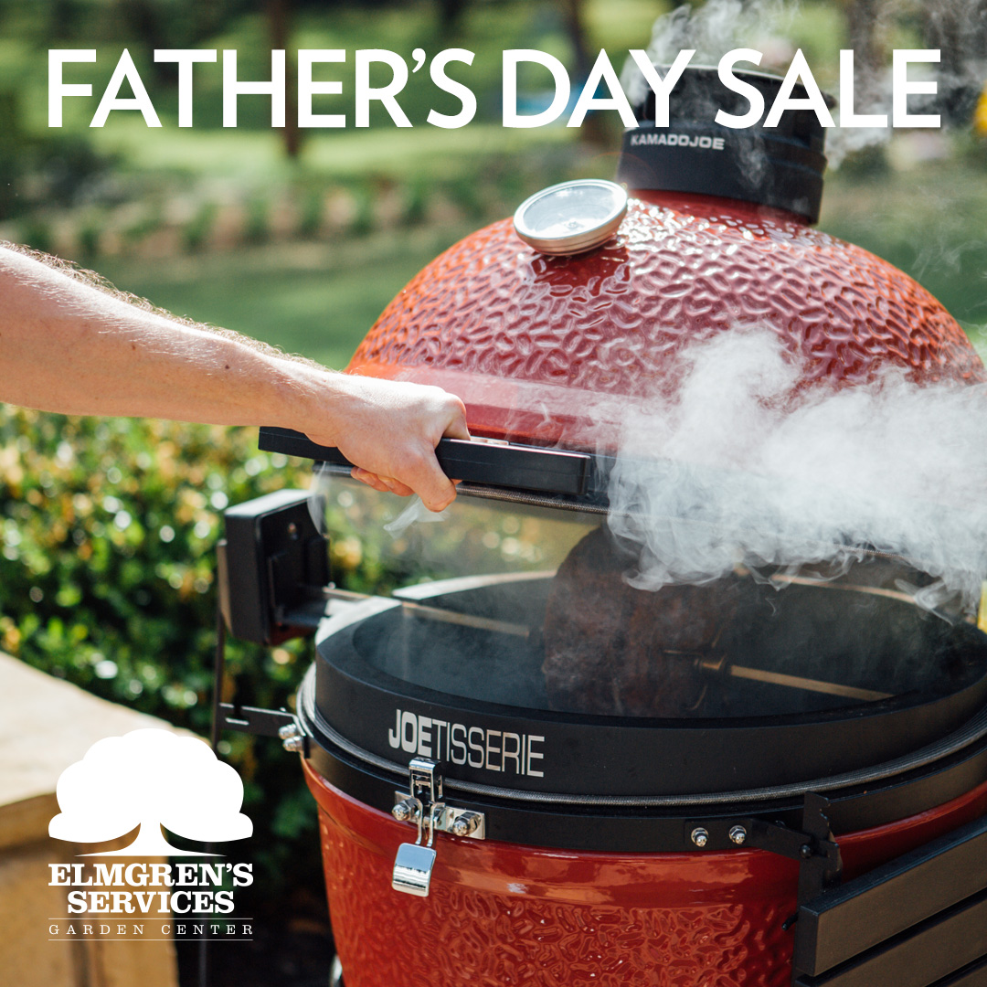 elmgrens-eblast-fathersday-1.jpg