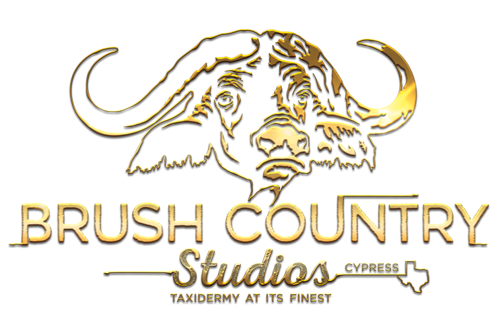 Brush-Country-Full-Logo_Gold-1024x682.png