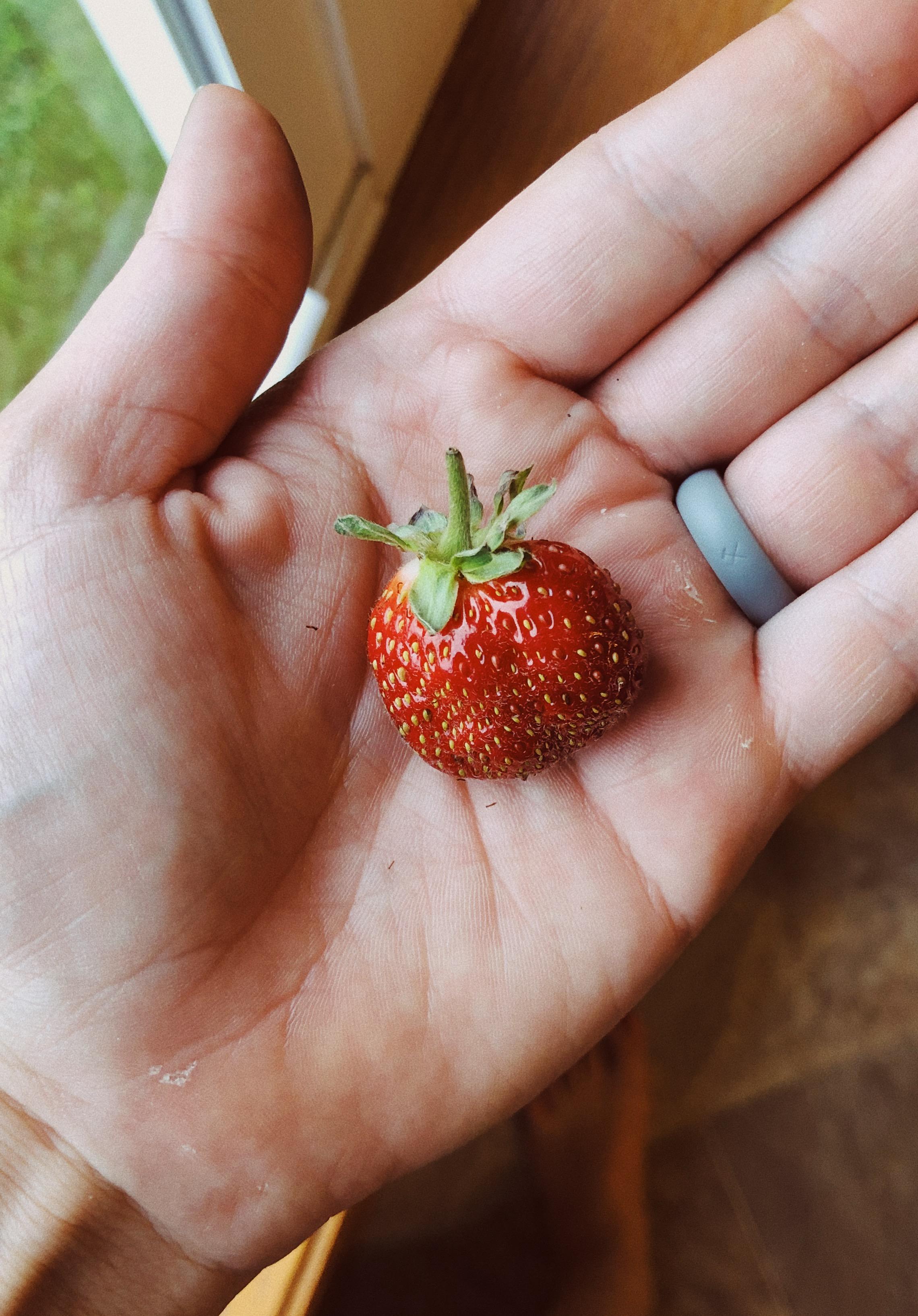 strawberrypleasantstblog
