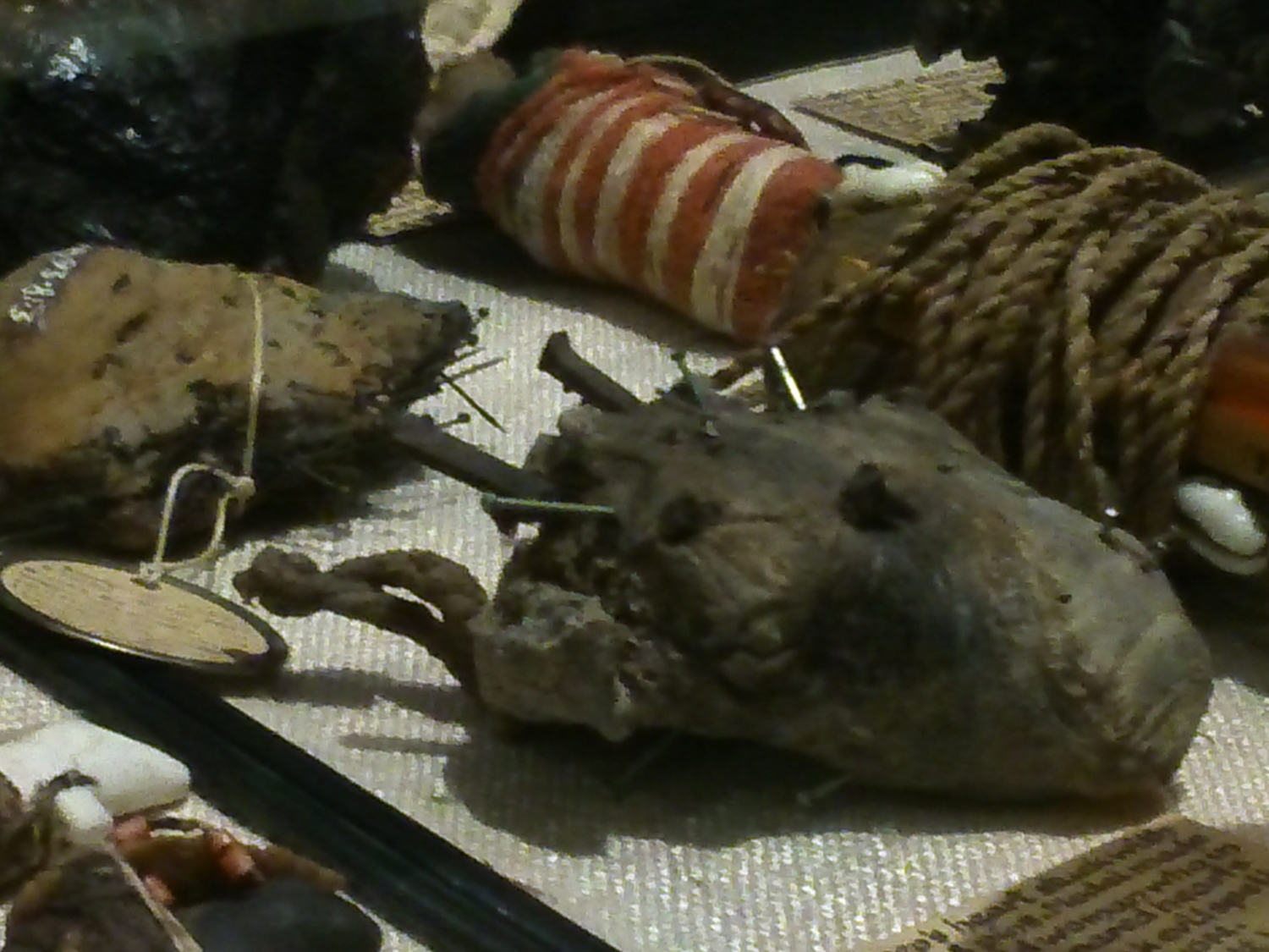 Chosen object: Amulet, asheep's heart stuck with pins and nails as formerlyused in South Devon for breaking evil spells.
