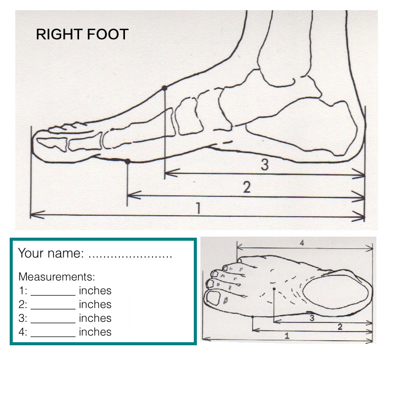 Measurements 1 to 4 of your right foot