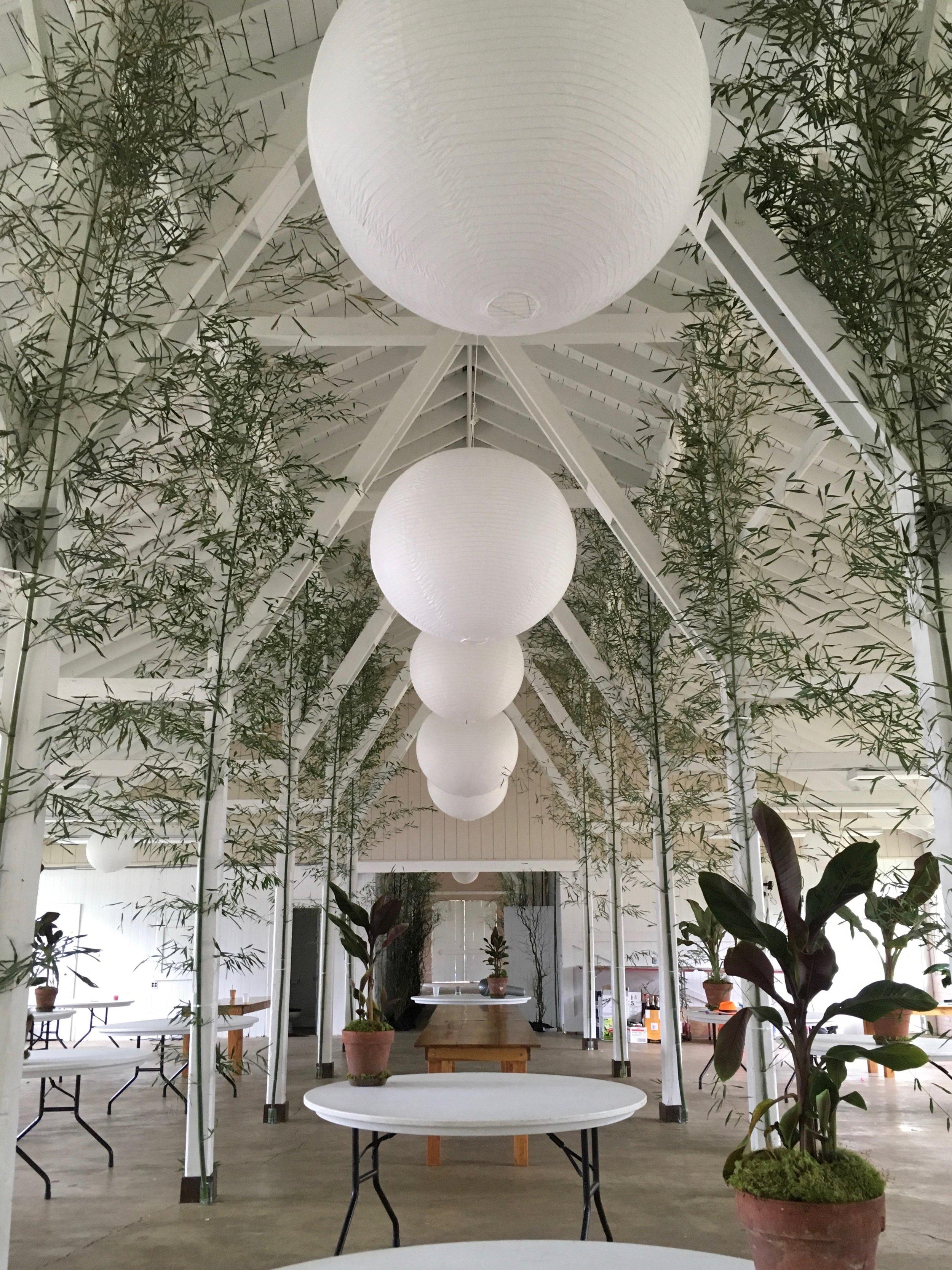 Eggsotic+Events+props+decor+lighting+rentals+wedding+decoration+design.jpeg