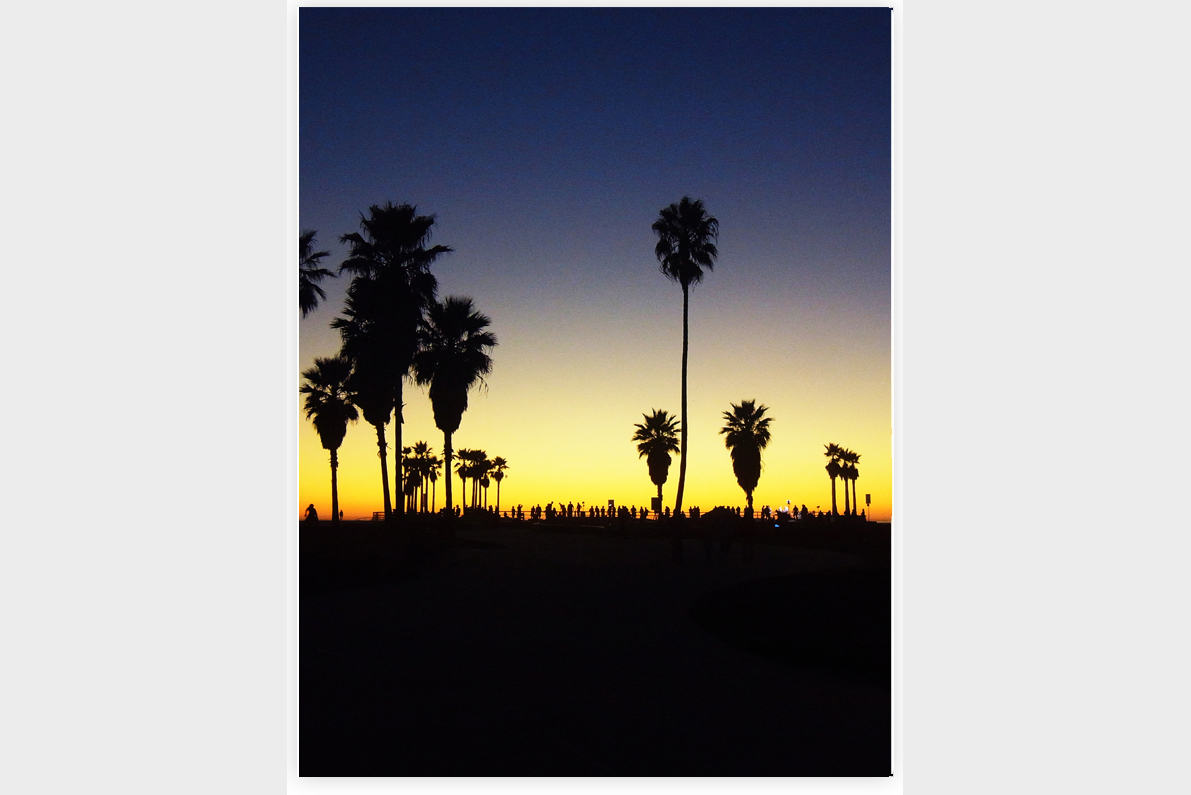 Venice Beach - Back Cover.jpg