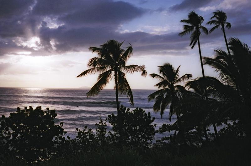 @captainbarto-@captainscamera-waves-book3-017.jpg