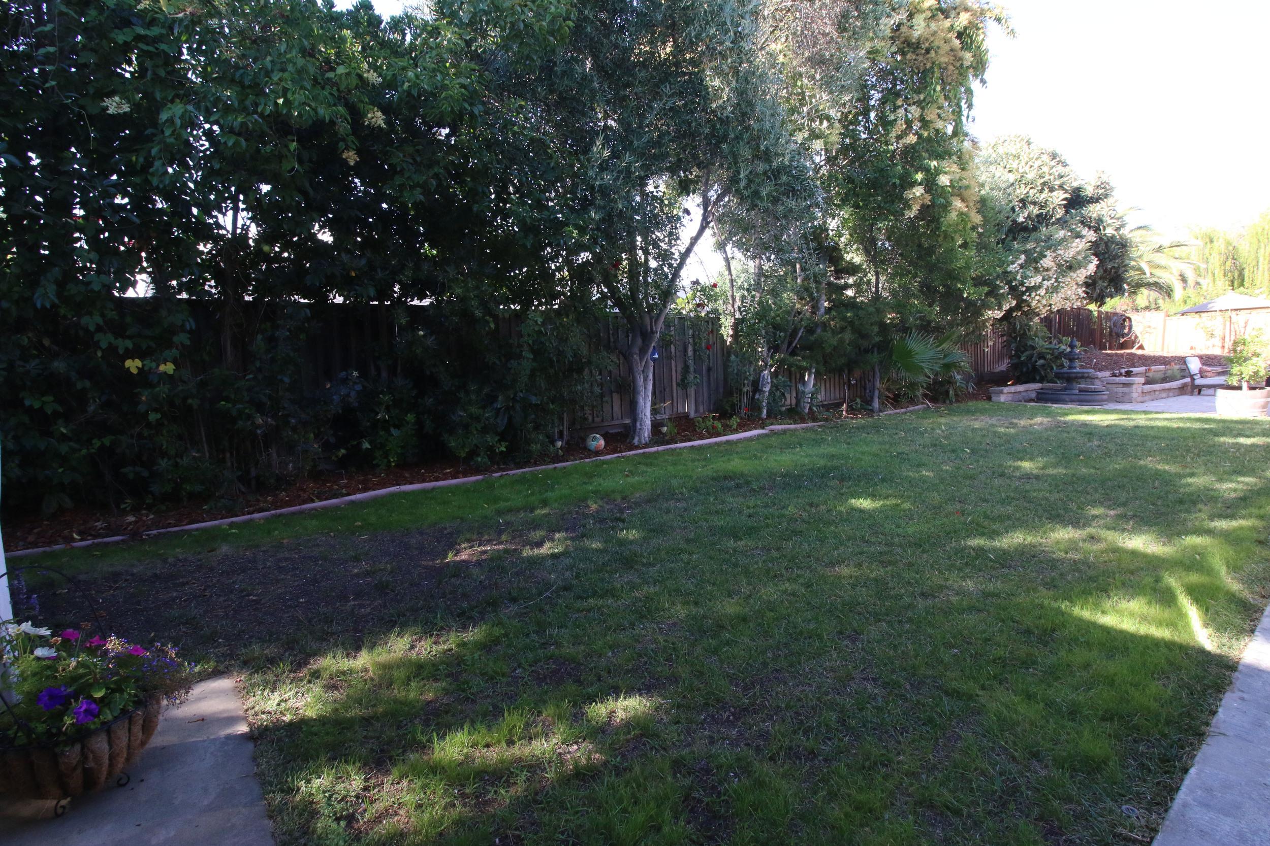 Firewood Back Lawn.jpg