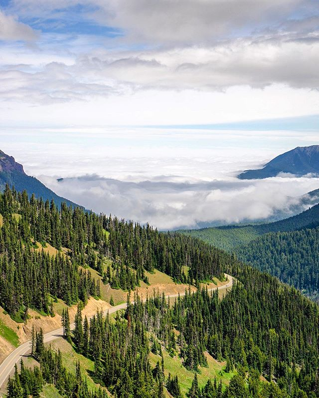 Road to cloud nine⛅️. #olympicnationalpark #pnwonderland #cloudnine #hurricaneridge #optoutside