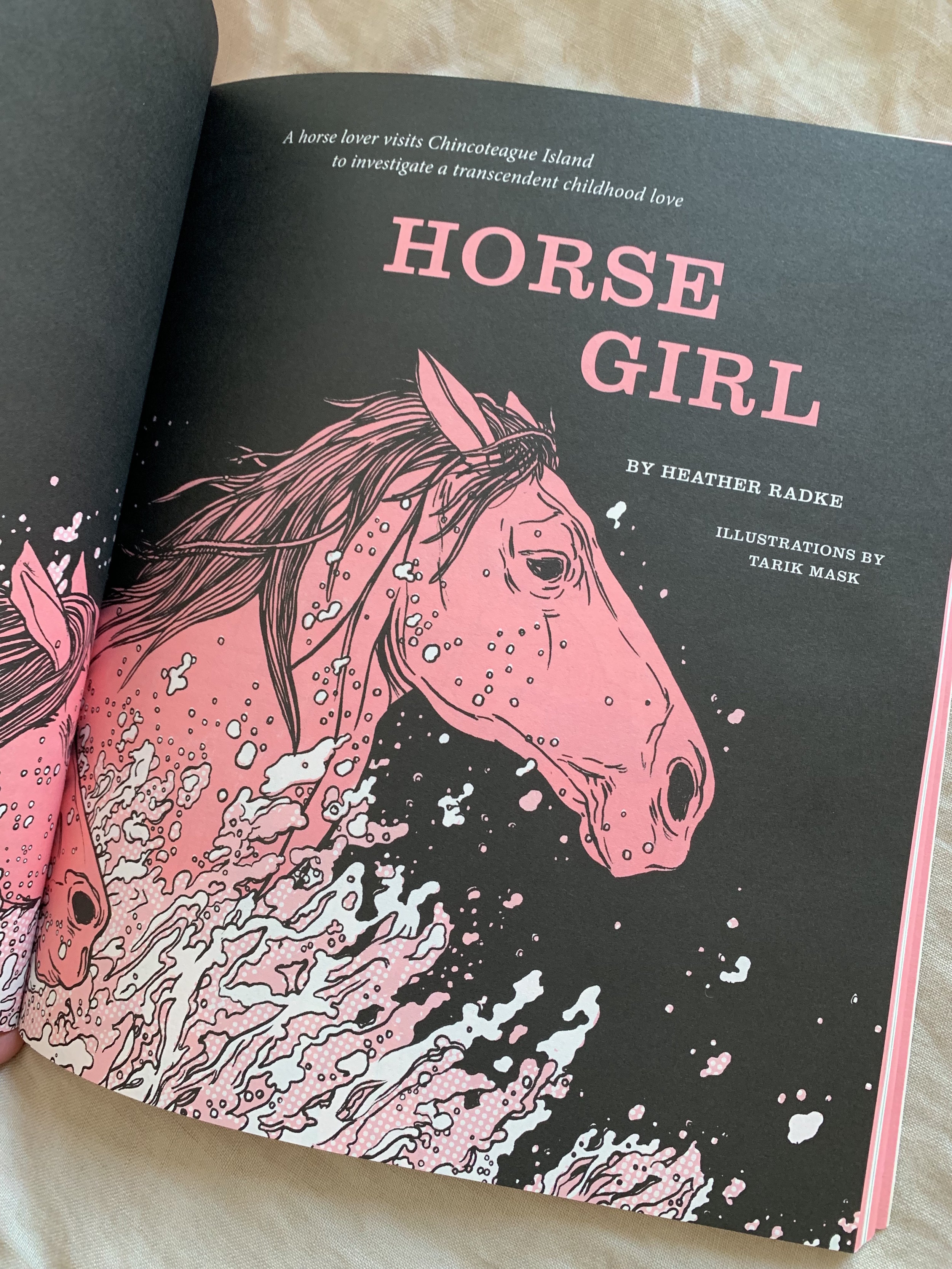 Horse Girl  The Believer, Feb/March 2019  On Misty of Chincoteague, Saltwater Cowboys, and the transcendent power of loving ponies