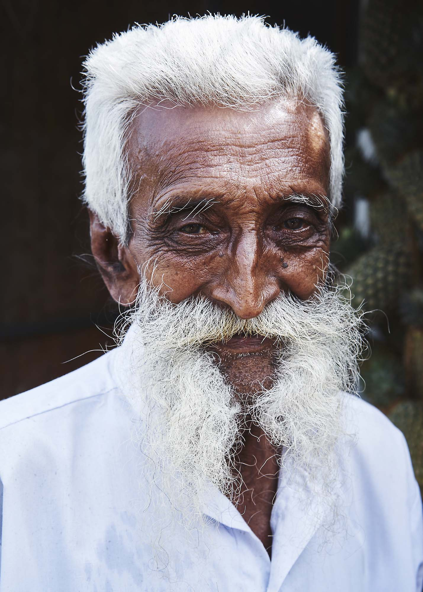 160116 Sri Lanka 1140.jpg