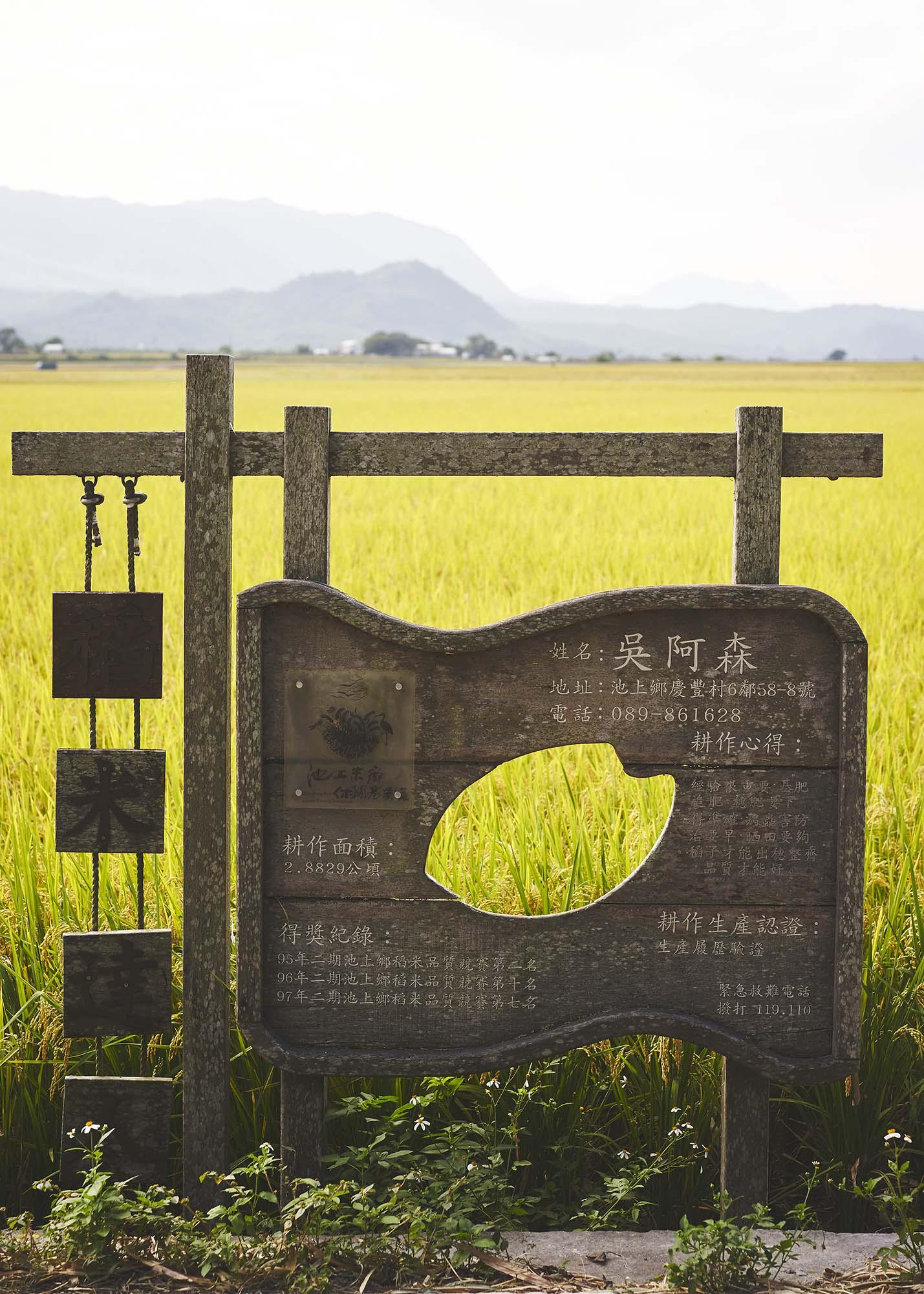 1711120 Taiwan 01320.jpg