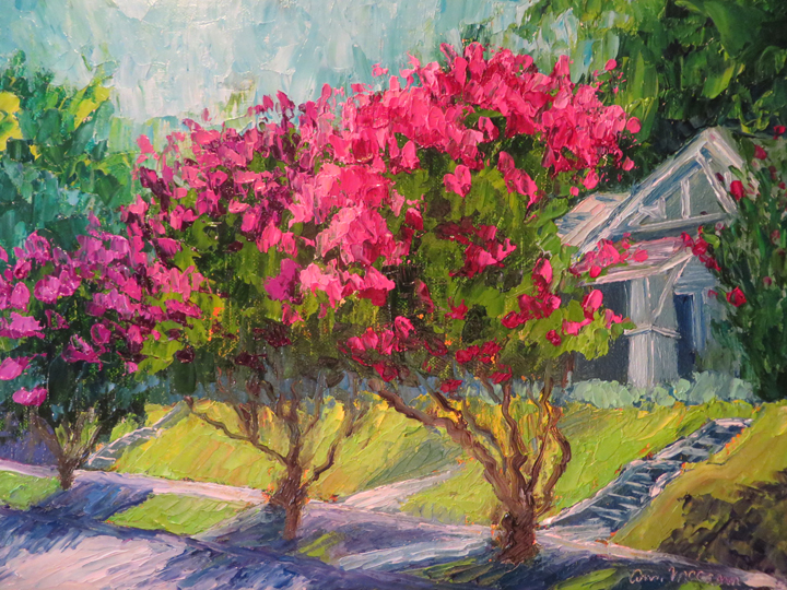 Hot Crape Myrtles 9 X 12 Oil by Ann McCann (c) 2015