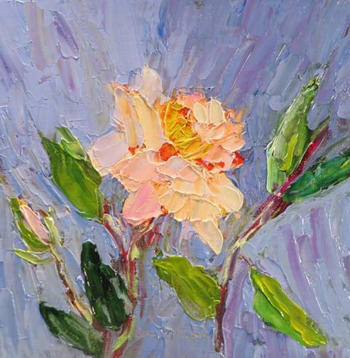 White Rose (c)Ann McCann 2016