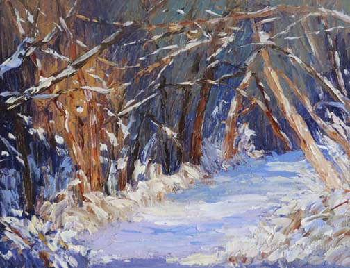 Snowy Woods (c) Ann McCann 2016