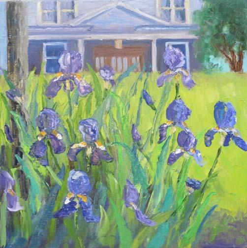 Irises in the Hood by Ann McCann (c)2016