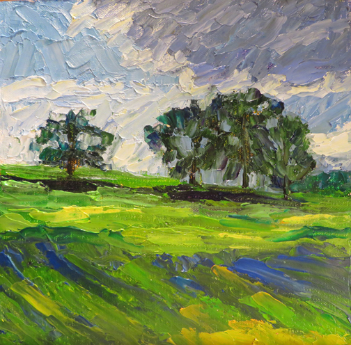 Coming Storm (c)Ann McCann 2016