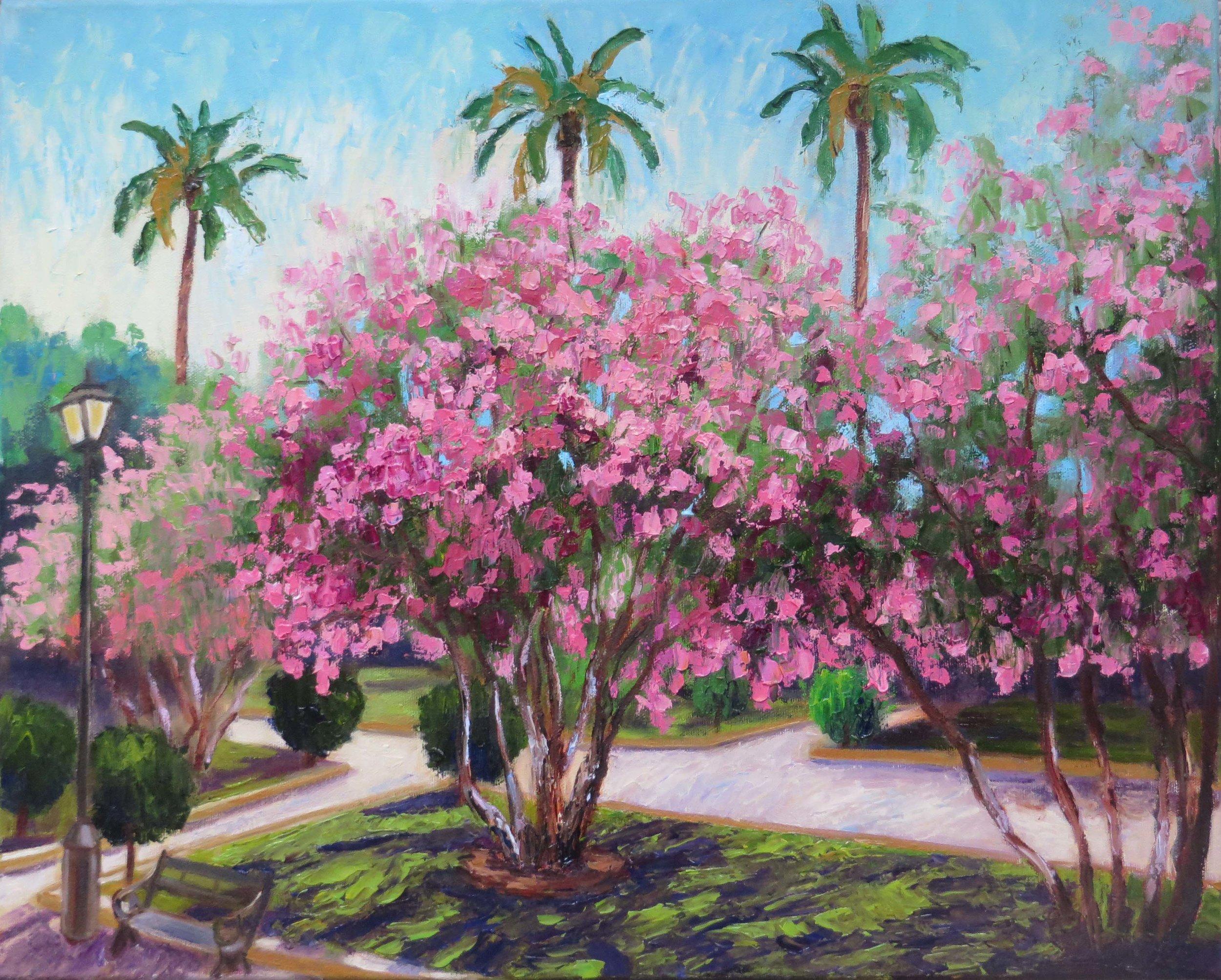 Sevilla Oleander 300.jpg