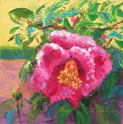 Pink Camellia 72 7.jpg