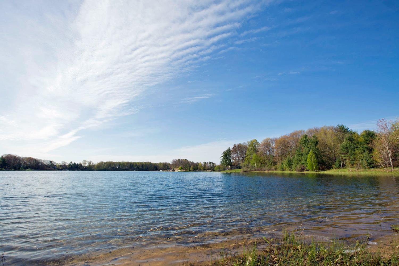 lake-shore.jpg