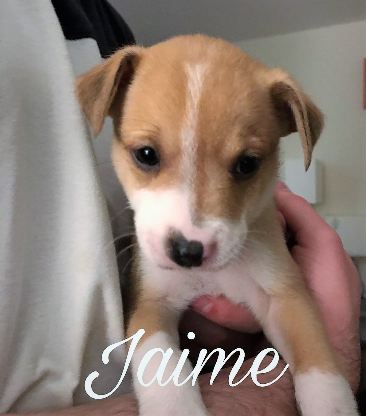 jaime_1.JPG