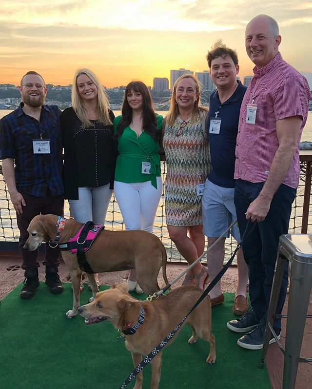 We sipped wine. 🍷 We watched the sunset. ☀️ We pet dogs. 🐶 And we raised money that will go toward saving lives! Our third annual ALR Boat Party was a success thanks to YOU! Check out our stories to see more of the event - and give us a shout in the comments below if you were there! Got pics? Send them our way, we want to compile them all. 🙏📸🛥🐾 A HUGE thank you to @baylanderix514 @prohibitionnyc and all of the amazing businesses that donated goods and services for our silent auction and raffle. Our satos thank you too. 💕🙏🐾