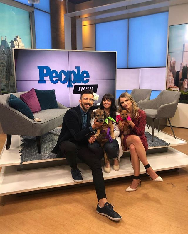 Adoptable satos Jim and Boomer are stars! 🌟 @drlisalippman, a member of our Board of Directors and veterinarian at @fuzzypethealth, went on @PeopleTV to talk about all things satos, ALR and keeping your pet healthy. Thank you so much for hosting, @people, @thejeremyparsons and @andreaboehlke! Catch Jim and Boomer on the next episode of People Now on people.com tomorrow at 12pm. 👏