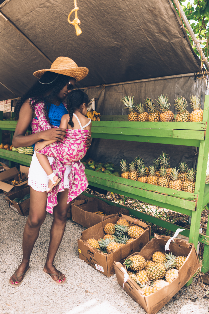 fruit stand pavo textiles-7.jpg
