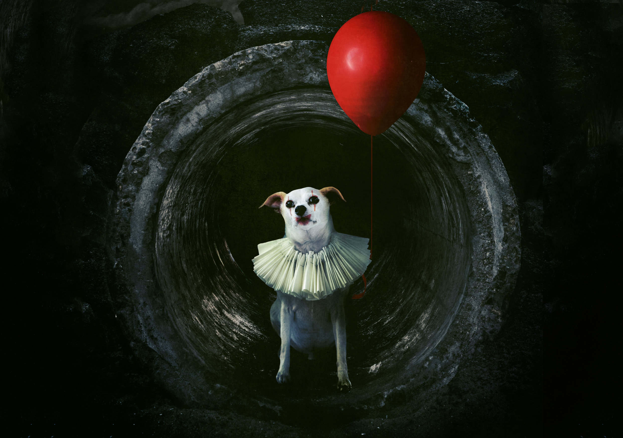 You'll Float, Too