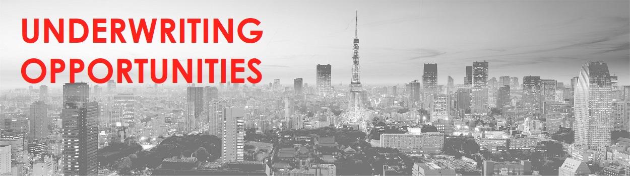 Tokyo Landscape BW UNDERWRITING OPPORTUNITIES.jpg
