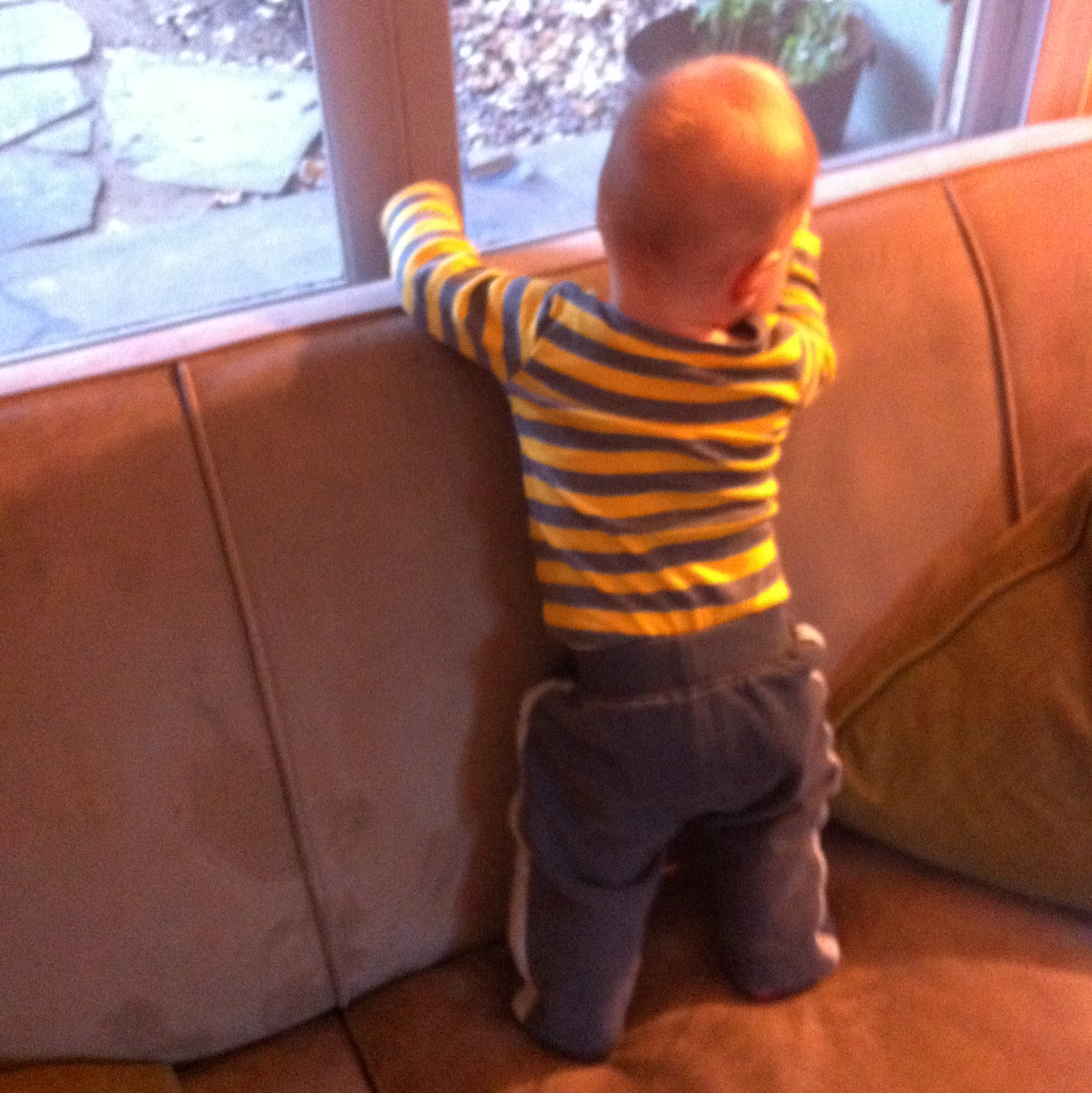 Baby proofing the home and childproofing advice for toddlers