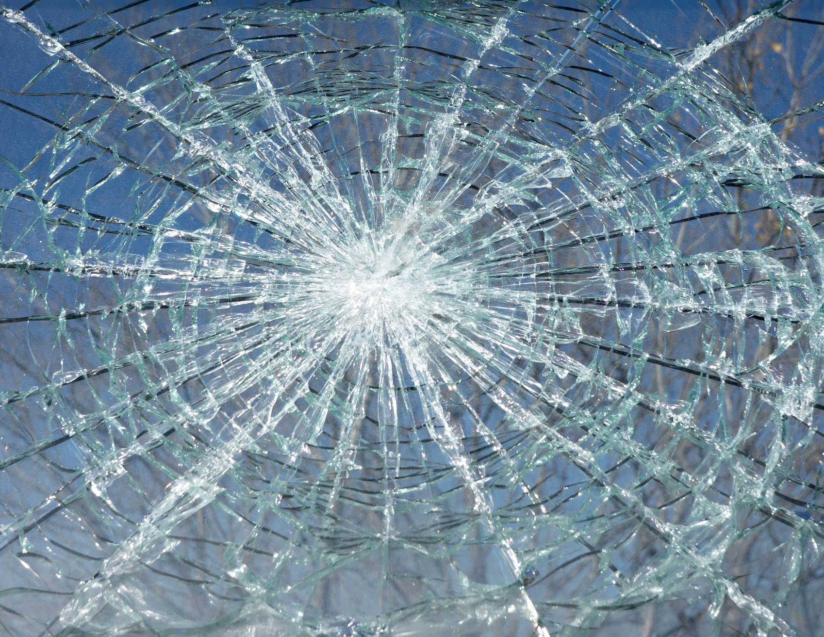 Broken glass contained by window safety film.