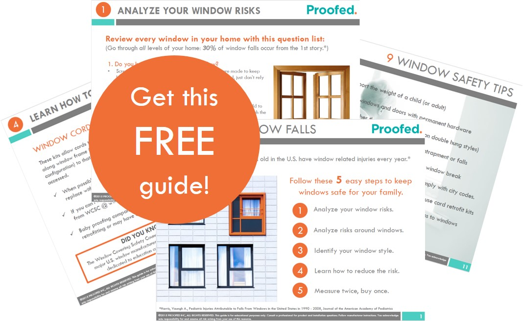 window safety guide promo pic.jpg