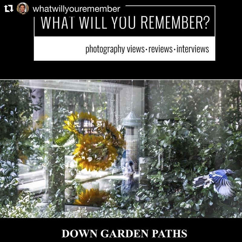 Review of Down Garden Paths by Elin Spring in What Will You Remember, April 2019