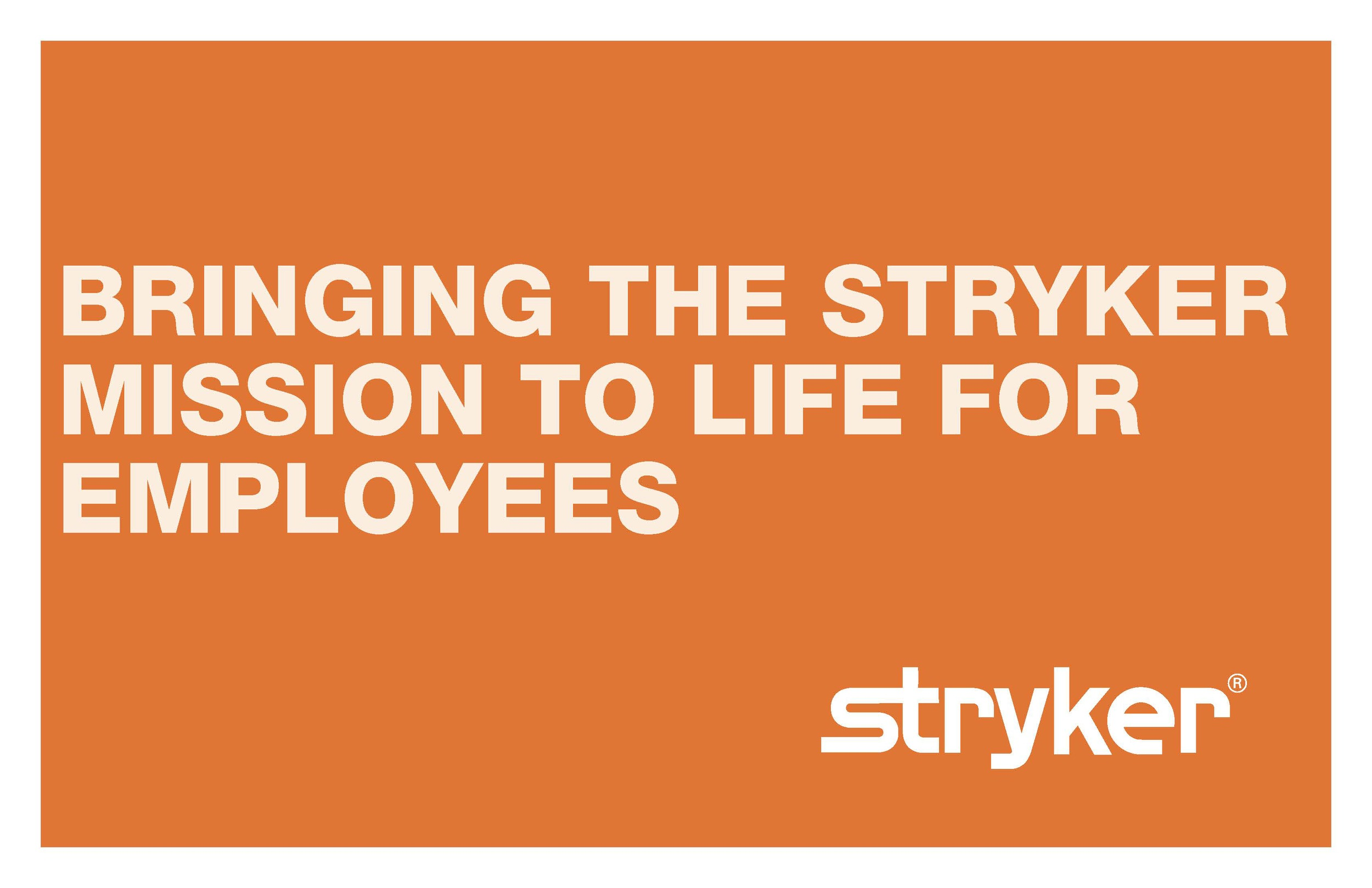 Stryker_MissiontoLife_R2b_Page_01.jpg