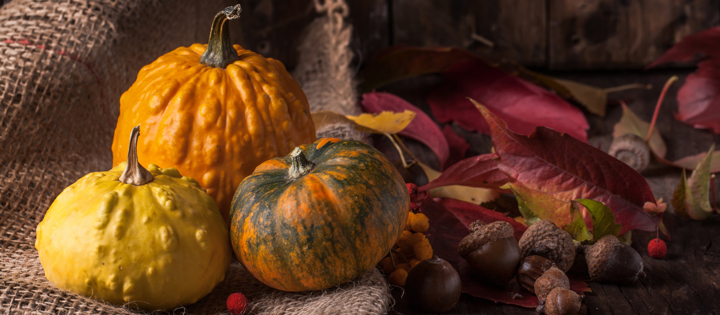 autumn food.jpg