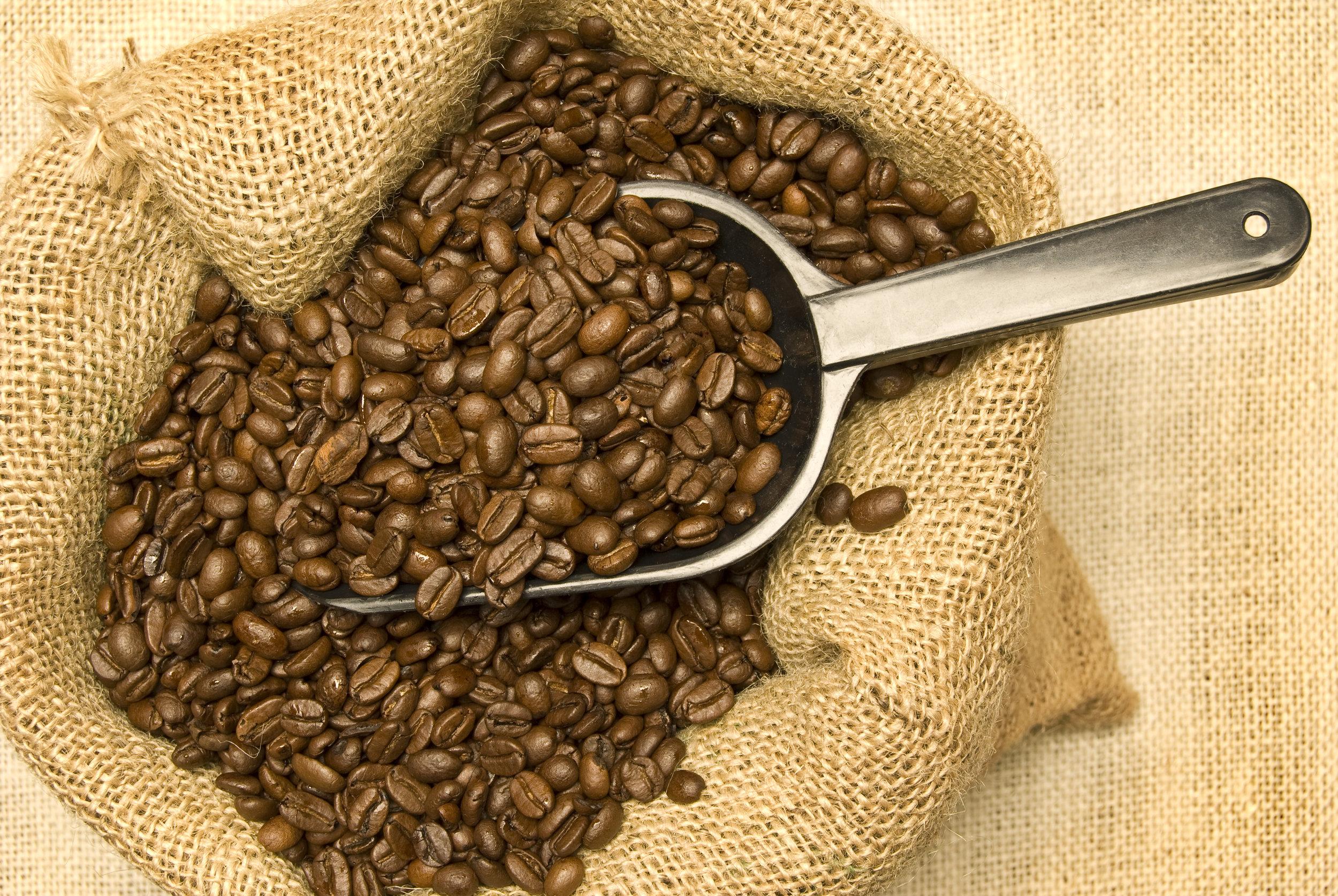 scoop-full-of-coffee-beans_SFSUkR64j.jpg