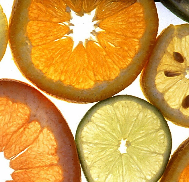 citrus+slices+narrow.jpg