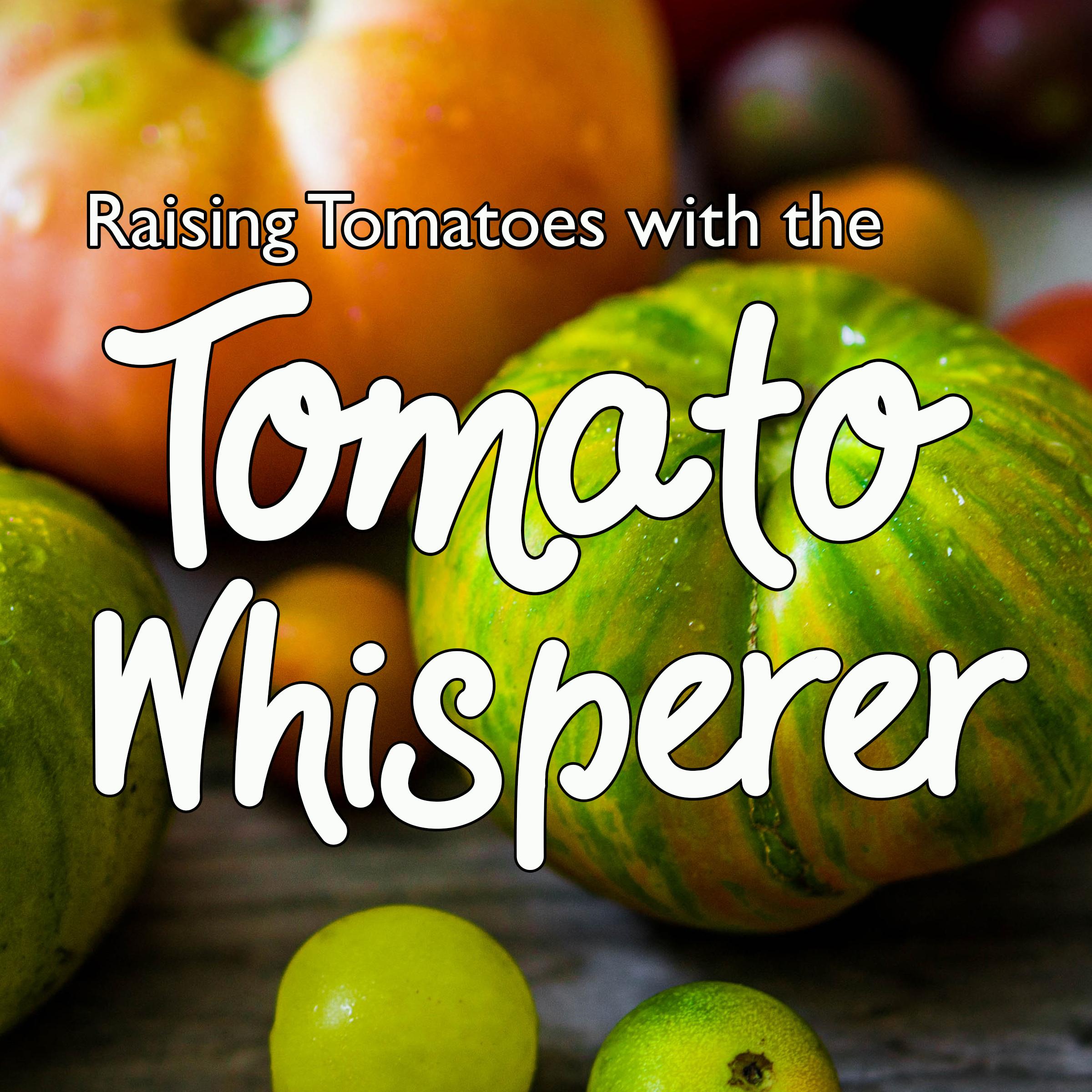 tomato whisperer square.jpg