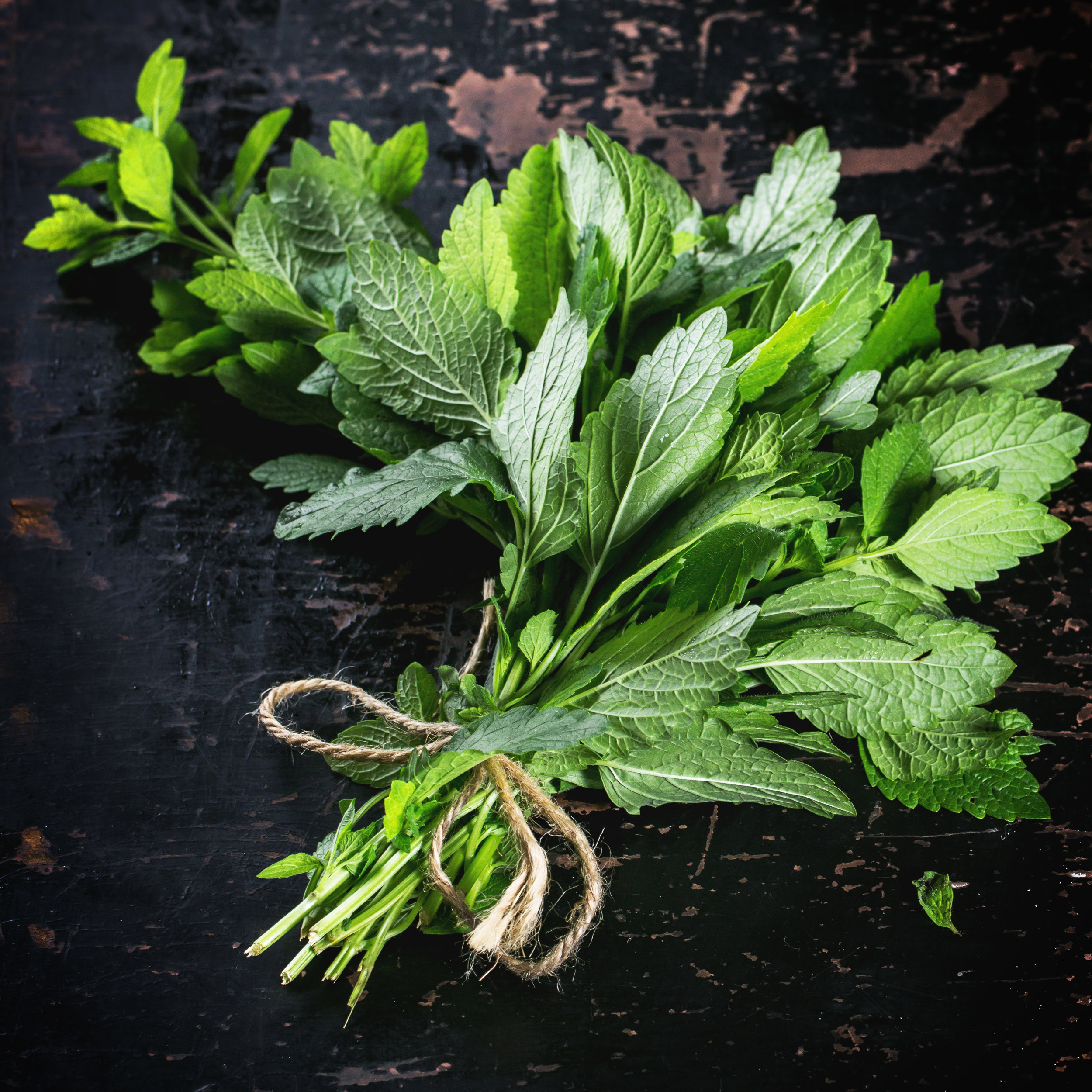 Many herbs can be stored like fresh flowers