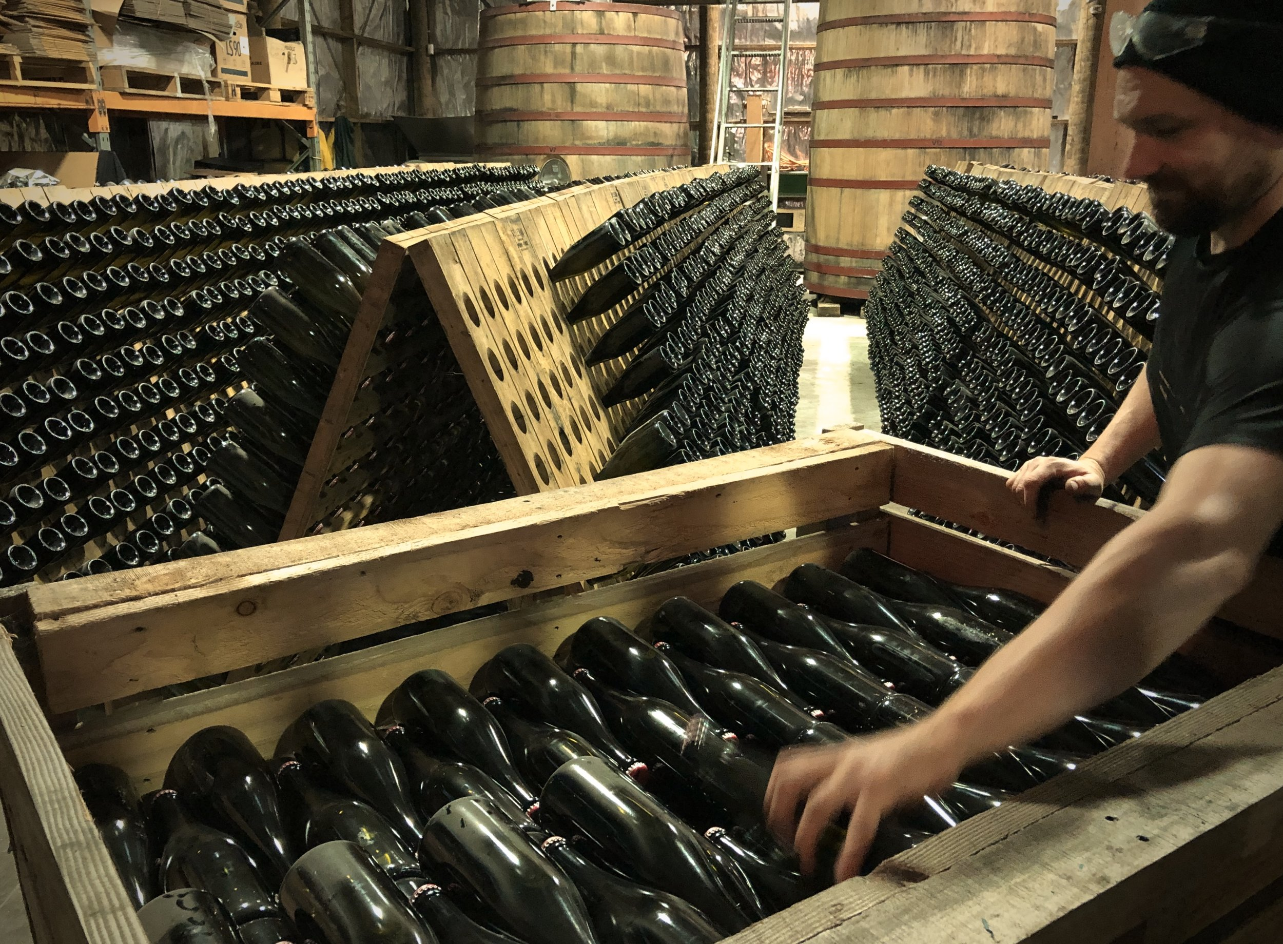 Assistant Winemaker Luca Fant setting up our riddling racks to start the riddling process for the Huia Brut Rosé 2017 which will be released in September or October this year.   Image by Claire Allan