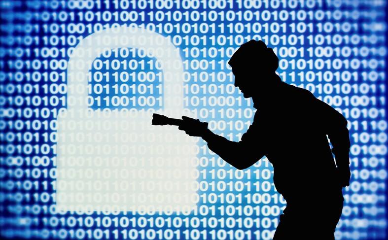 IMGT security.jpg