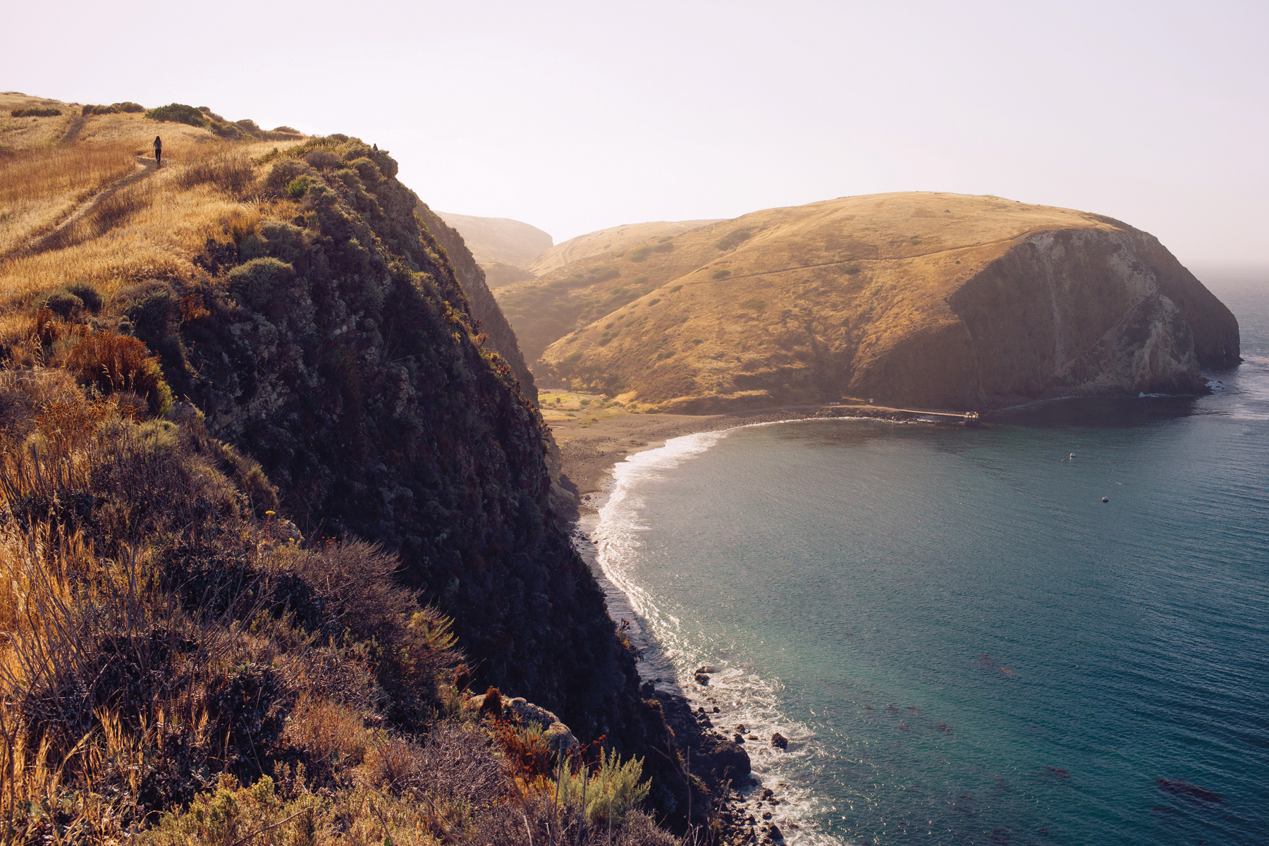 Despite their primarily pristine and wild nature, many of the Channel Islands' native vegetation communities still exhibit the subdued signs of a long ecological recovery. For instance, in 1999, the last remaining feral sheep were captured from Santa Cruz Island, bringing to end a nearly 200-year history of livestock grazing.
