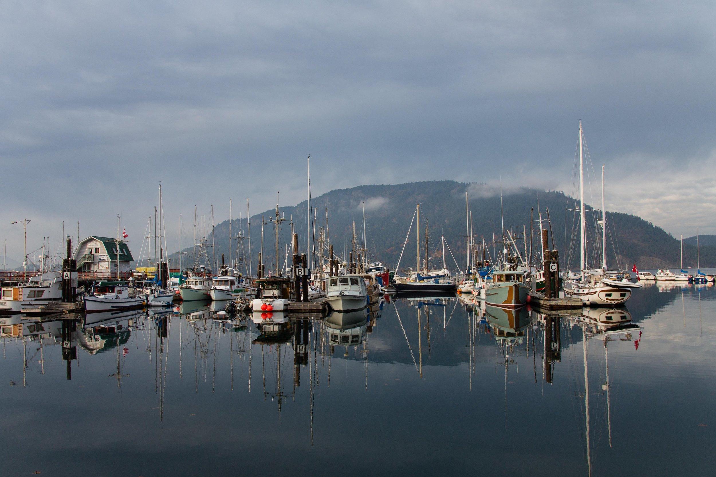 Vancouver_Island(315of330).jpg