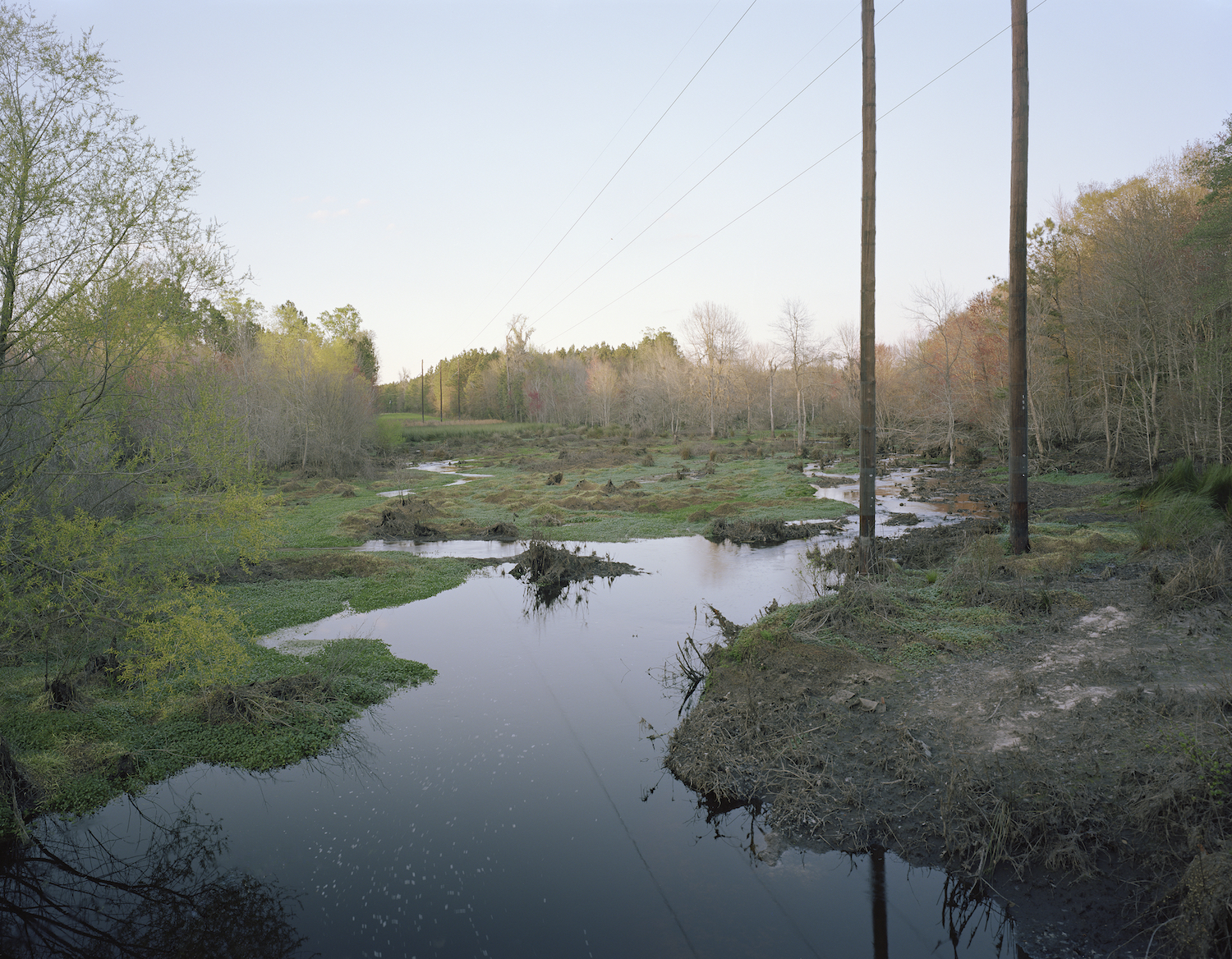 Stream just before King American Finishing Plant  Screven County