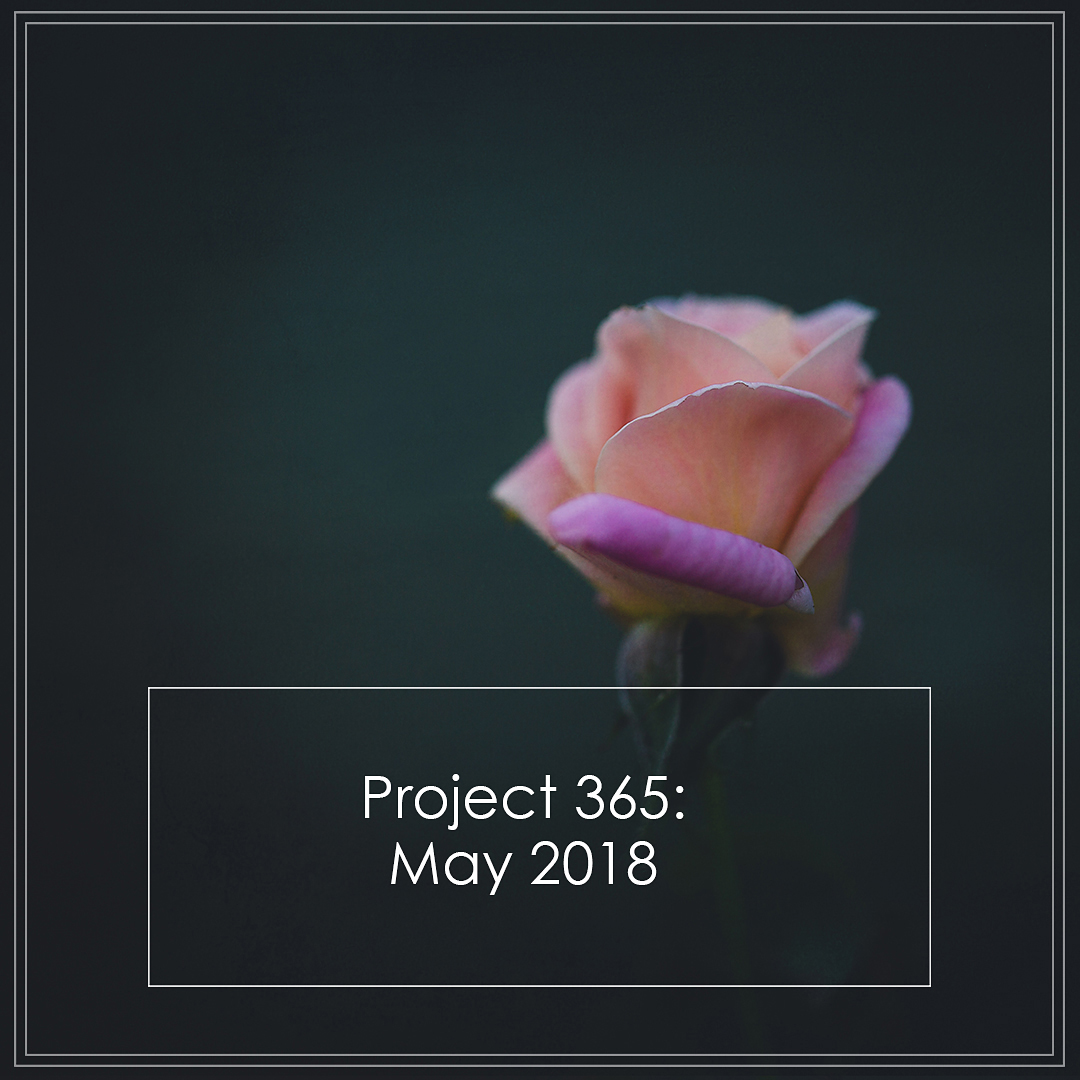 ButterflyRoseDesigns Project 365 May2018