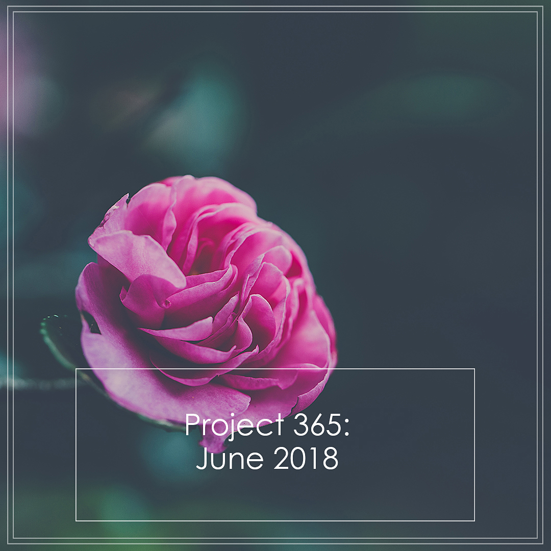 Butterfly Rose Designs Project 365 June 2018