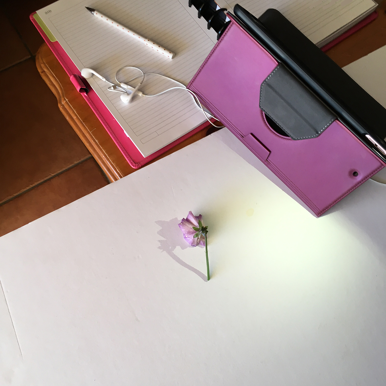 Butterfly Rose Designs Shadow Heart Behind the Scenes