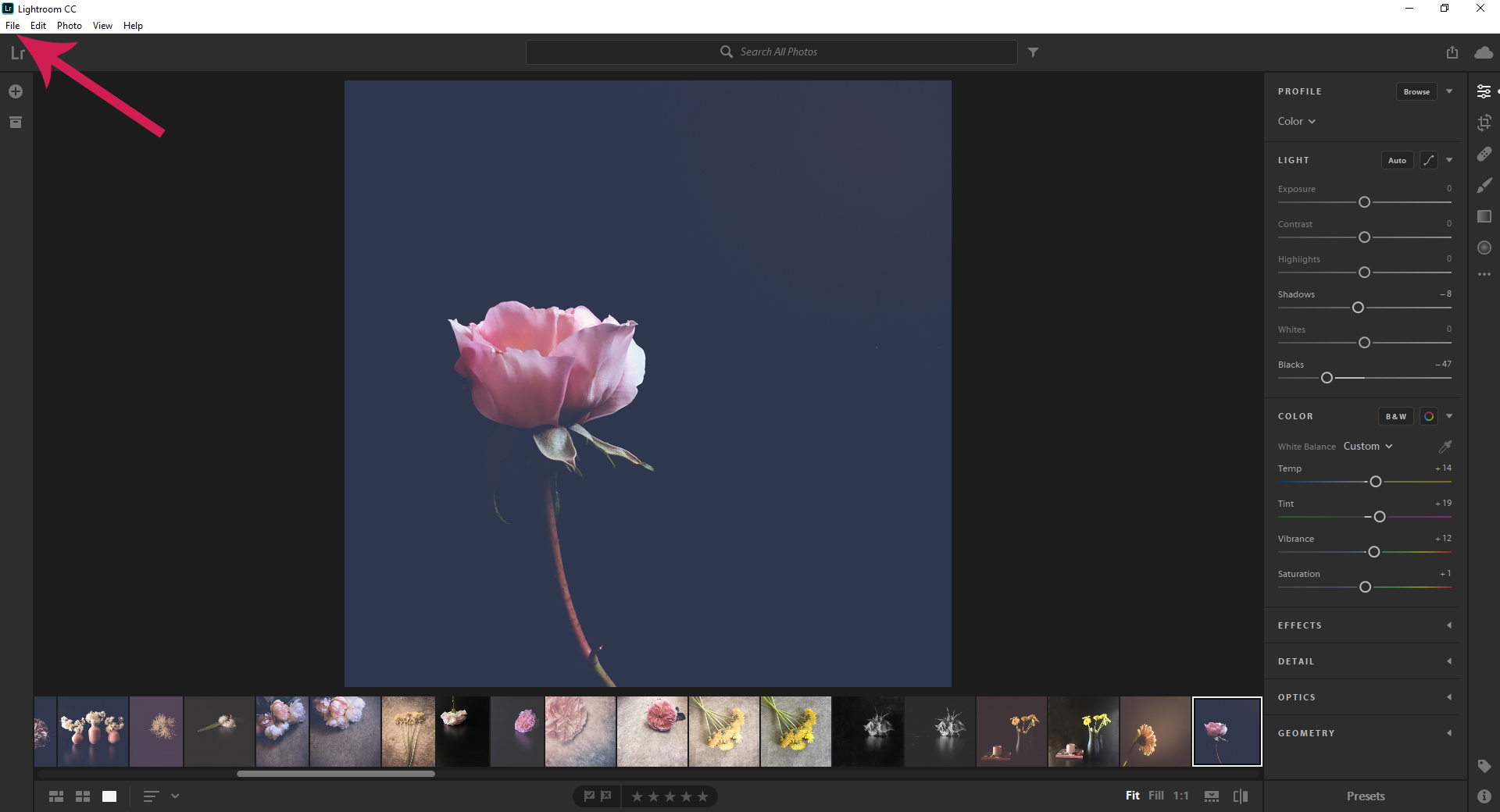 Butterfly Rose Designs LR Presets 1